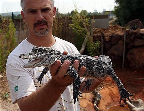 samuel martin ferme au crocodiles-drome-tourisme-pierrelatte