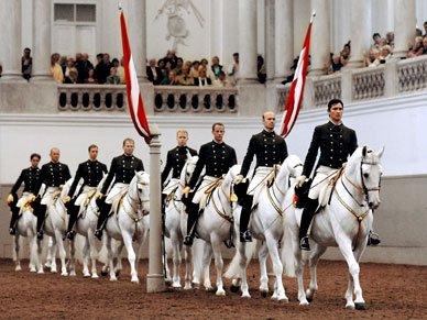 vienne1-amslav-equitation-autriche