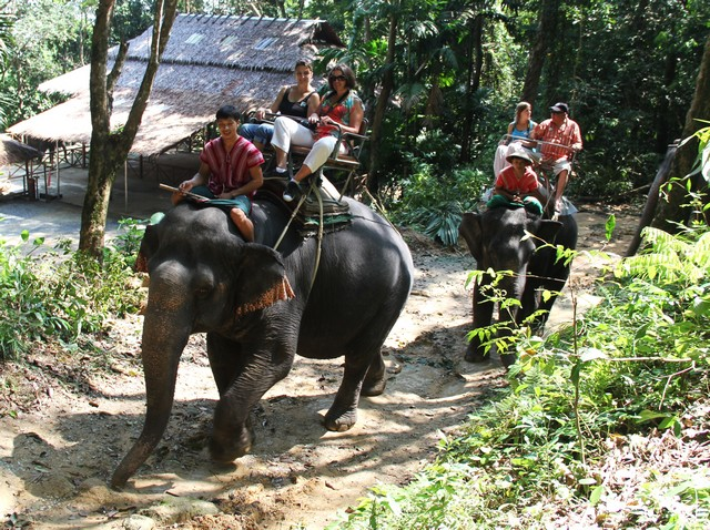 ASIA THAILANDE 7 115