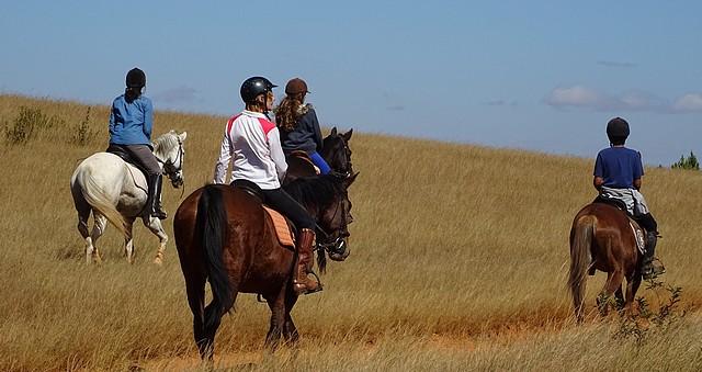 Mantasoa-cheval