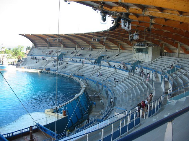 marineland grand bassin orque