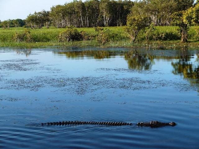australie-asia-defi-Croisière découverte sur les Yellow Waters