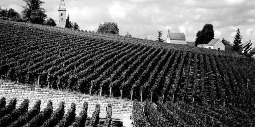 France: Bourgogne