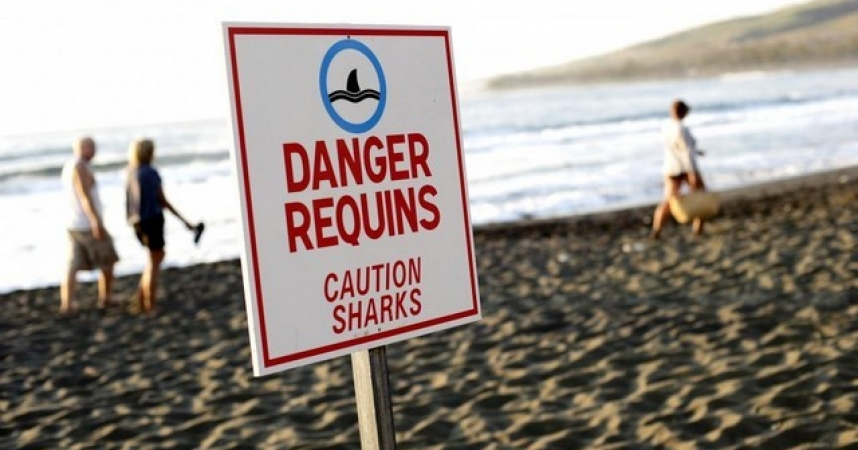 Encore une attaque de requin à La Réunion, dans une zone interdite à la baignade