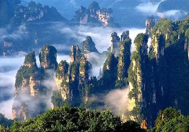 Zhangjiajie -forets