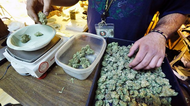 colorado_cannabis
