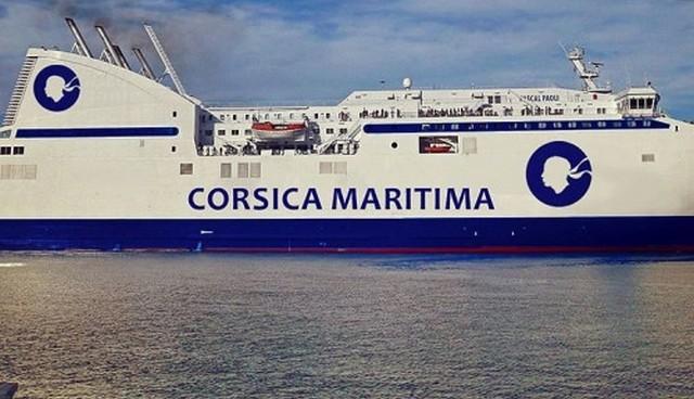 corsica maritima