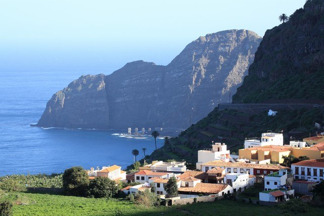 canaries 2
