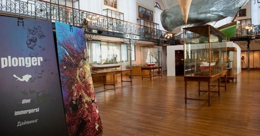 Le Musée Océanographique de Monaco prépare son renouveau