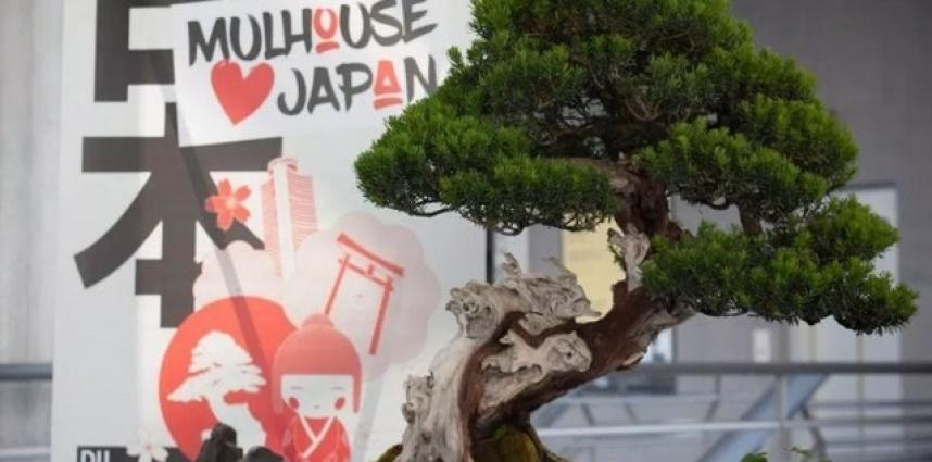 Mulhouse loves Japan